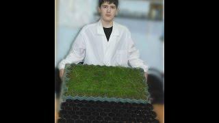 Студия ландшафтного дизайна  Газонные решетки(Газонная решетка для экопарковок -это специальный газон, защищенный от внешнего воздействия решеткой...., 2015-01-29T12:53:00.000Z)