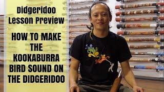 How to make the Kookaburra bird sound on the didgeridoo - Didgeridoo Lesson Preview