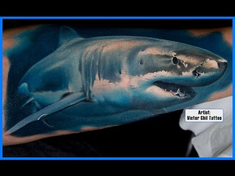 best shark tattoos youtube rh youtube com great white shark tattoos designs great white shark tattoo ideas