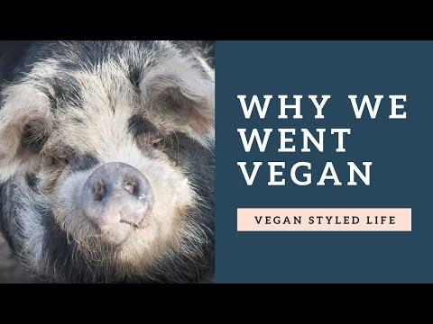 Why We Went Vegan