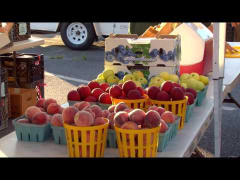 THE COLLINGSWOOD FARMERS' MARKET (full version)