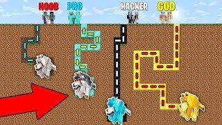 Minecraft Battle: NOOB vs PRO vs HACKER vs GOD : FAMILY MAZE TO DOG PET Challenge in Minecraft
