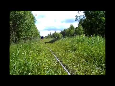 Подбивка пути на Тёсовской УЖД (Repair of tracks on the narrow-gauge railway, Tyosovo, Russia).