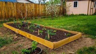 Making A Simple Mini Raised Garden Bed Using Cedar Fence Pickets