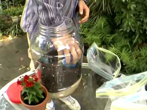 Building a Water Cycle Experiment