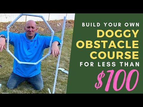 DIY Agility Obstacles For Under $100