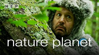 Nature Planet | Narrated by Adam Sandler