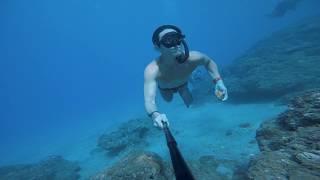 這樣清澈的小琉球海裡竟然都是這個