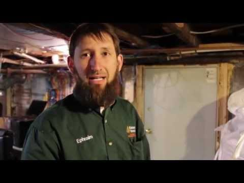 Wood Pellets For Sale from Kingdom Biofuel Save on Pellet Heating