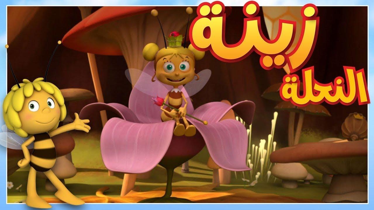 مايا النحلة - مفاجأة زينة & مايا النحلة   رخصة الطيران