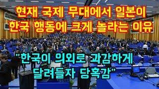 """현재 국제 무대에서 일본이  한국때문에 크게 놀라는 이유 """"한국이 과감하게 달려들자 당혹감"""""""