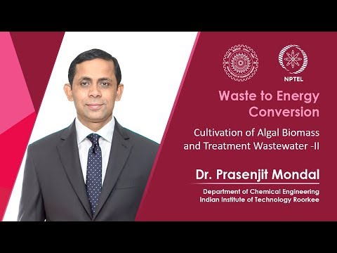 Cultivation of algal biomass and treatment of waste water-2