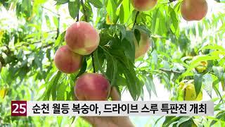 순천 월등 복숭아, 드라이브 스루 특판전 개최