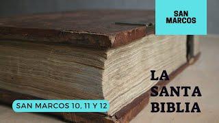 Evangelio según SAN MARCOS 10, 11, 12 (DÍA 257) LA SANTA BIBLIA || Audiolibro ||