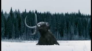 Walking with Beasts Se1 - Ep06 Mammoth Journey - Part 01