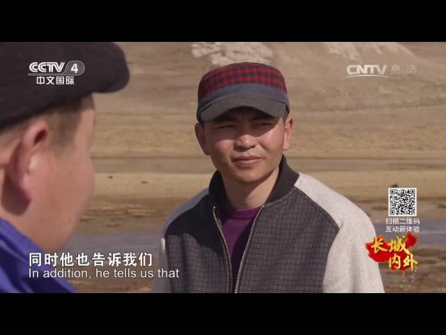 长城内外(187)天鹅归来  【1080P】
