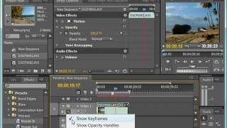 Работа с динамическими эффектами в Adobe Premiere CS4 (27/39)