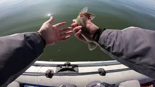 Рыбалка в Новосибирске Обское водохранилище Спиннинг осенью