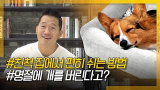 How to rest comfortably in a relative's house+What is with those who abandon their dogs on holidays?