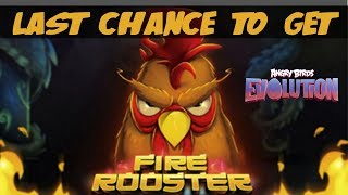 Last Chance For Fire Rooster - Angry Birds Evolution