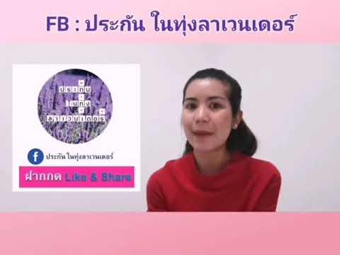 โปรโมชั่น ชำระบัตรเครดิต KBANK #เมืองไทยประกันชีวิต #ประกันในทุ่งลาเวนเดอร์
