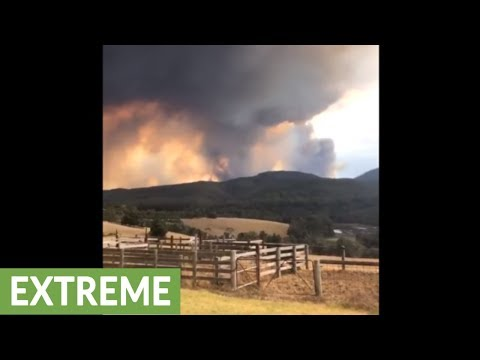 Massive bushfire in Australia caught on camera