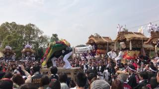 千早赤坂村制施行六十周年記念   獅子舞