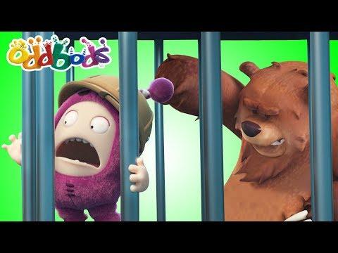 Don't Poke The Bear   Oddbods Full Episodes   Funny Animal Cartoons