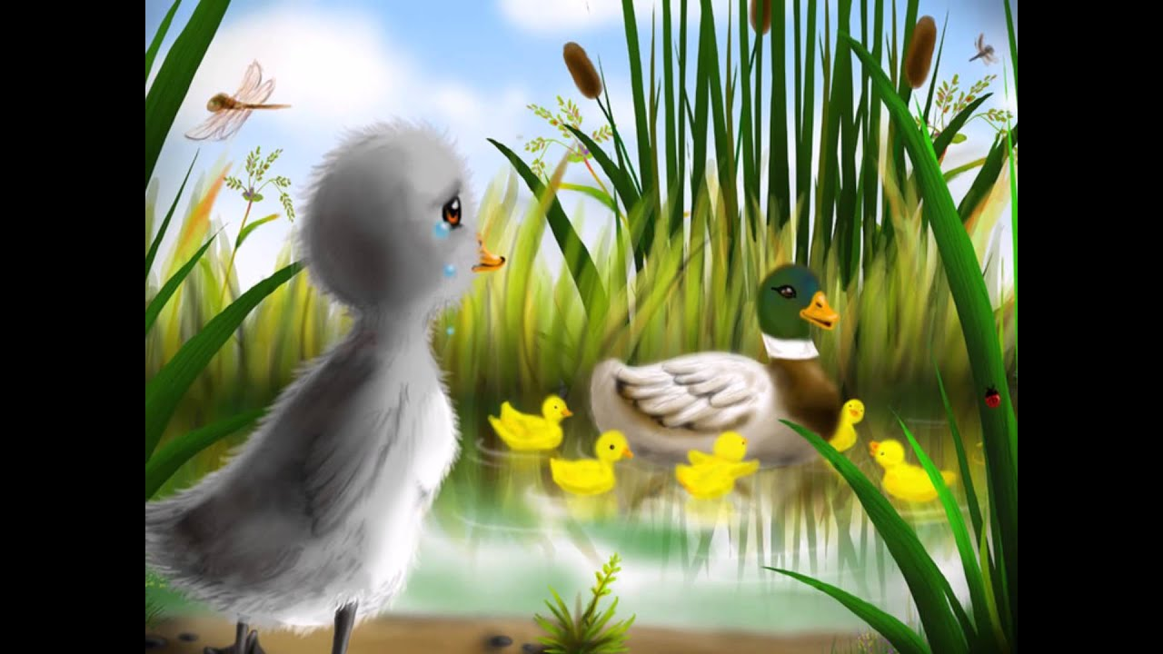 the ugly duckling book trailer youtube