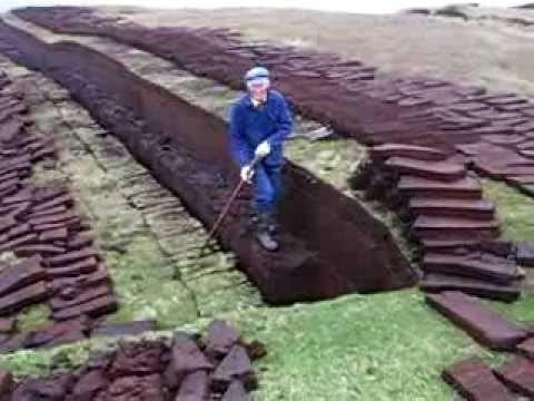 Cutting Peats in Shetland Islands, Scotland