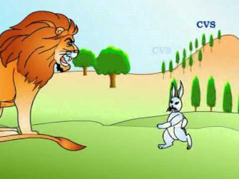 Cat And Dog Cartoon In Hindi