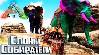 ДЛИНА БИВНЕЙ РЕШАЕТ - Pugnacia ARK Survival Evolved #3