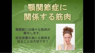 顎関節症に関係する筋肉