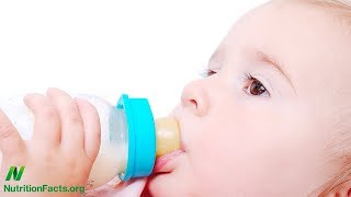 Jsou alternativy bez BPA bezpečné?
