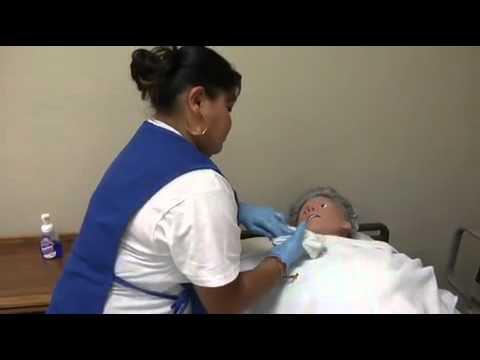 Certified Nursing Schools And CNA Job Duties