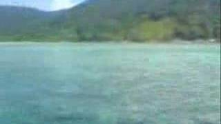 Coral Reef Natuna Island