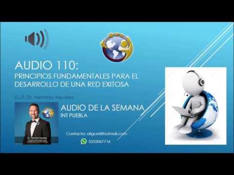Audio 110 - Principios Fundamentales para el Desarrollo de una Red Exitosa -DIP Dr. Herminio Nevárez