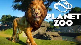 Efsanevi Bir Hayvanat Bahçesi İnşa! Mükemmel Bir Aslan Kasa - Planet Zoo Beta Franchise Oyun Kapalı