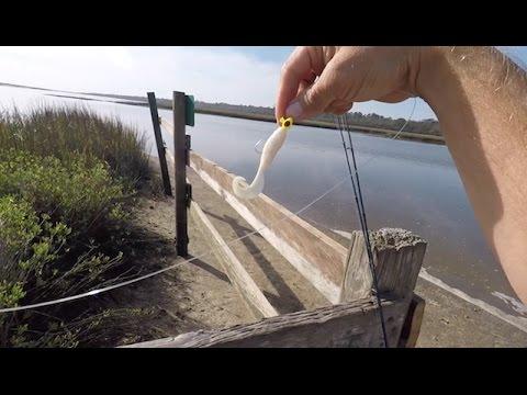 Best Lure For Beginner Fisherman