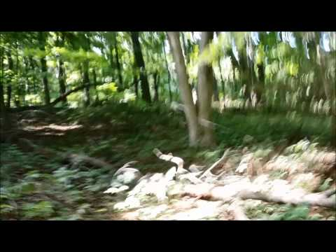 """Bigfoot Gift Basket Area A 8/15/15 Part 2 in """"Slowmotion"""""""