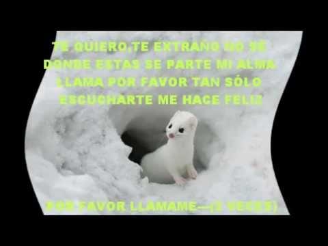 DANNY DELGADO-LLAMAME