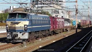JR貨物 EF66が牽引する3本の貨物列車を撮影(R1.12.9)