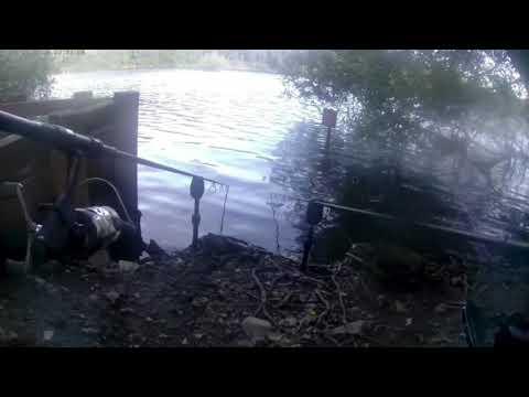 Carp Fishing The Fendrod