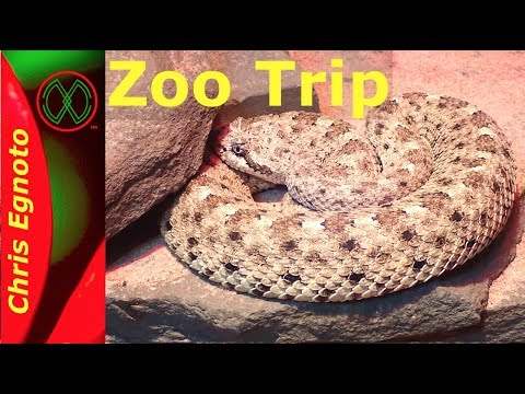 Trip to Philly Zoo on me Birthday