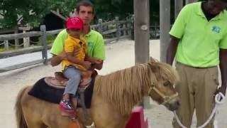 Pony Ride Turtle Back Zoo