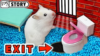 🐹 Prisoner hamster escapes the awesome hamster police maze with traps for pets 🐹 Homura Ham