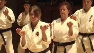 The 3rd Okinawa Traditional Karate and Kobudo Worldwide Seminar Movie