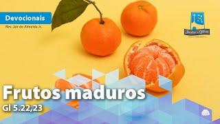 Frutos maduros | Gl 5.22,23