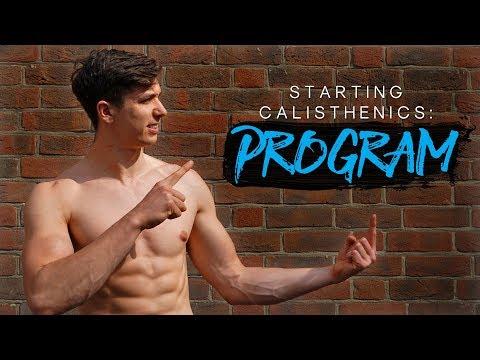 FREE Program (100K) | Starting Calisthenics