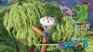 FORTNITE DISCO DOMINATION! 10 kills with first time Play!!
